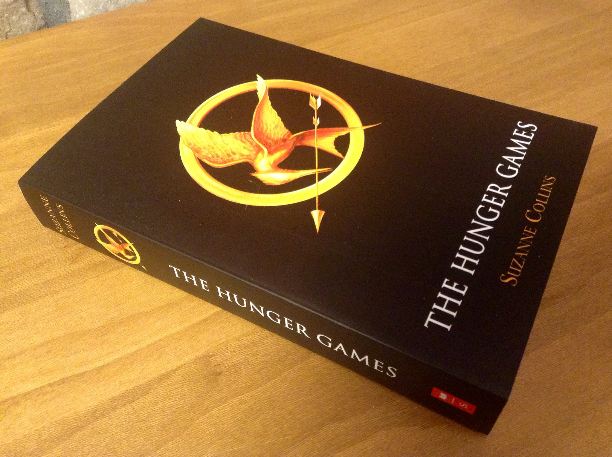 Hungry Games book cover